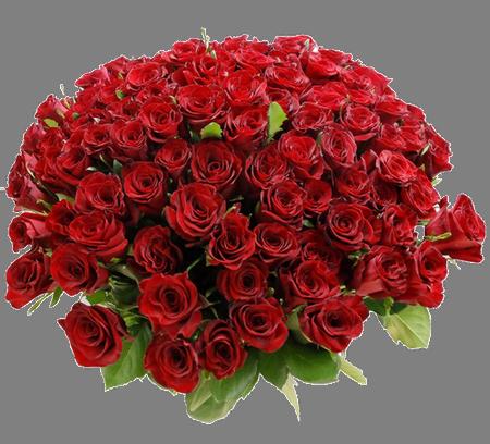 Petit cadeau pour Shakira 435657rouge32