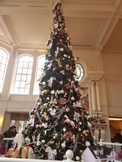 Disneyland Hotel - Page 39 4356742412972817909522876038801569493921227562456n