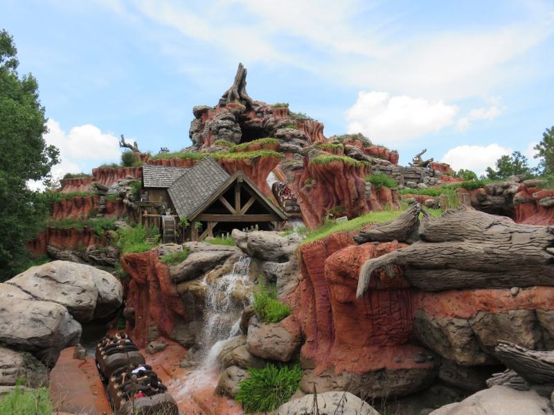 Walt Disney World + Universal Studios + Sea World + Busch Gardens Summer 2014 - Page 2 439974IMG0495