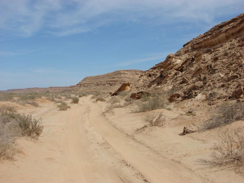 Le Grand Sud du Maroc - II 441169045