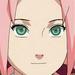 Recensement Avatar 445071sakura