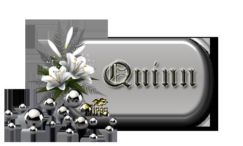 Nombres con Q - Página 2 4466451Quinn