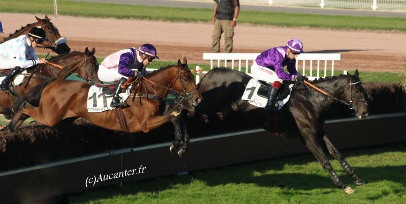 Photos Enghien 22-10-2016 Grand Steeple 4471465J6A9686