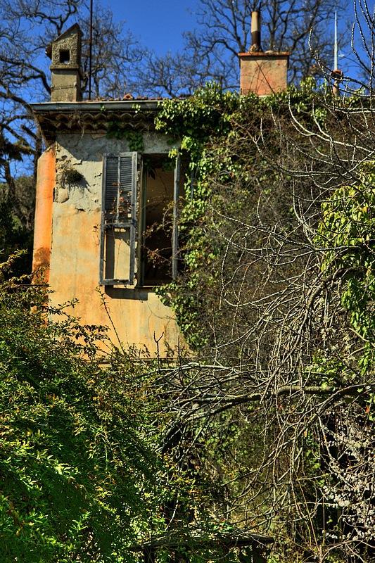Le Château de la Belle au Bois Dormant 447989IMGP0610090807op