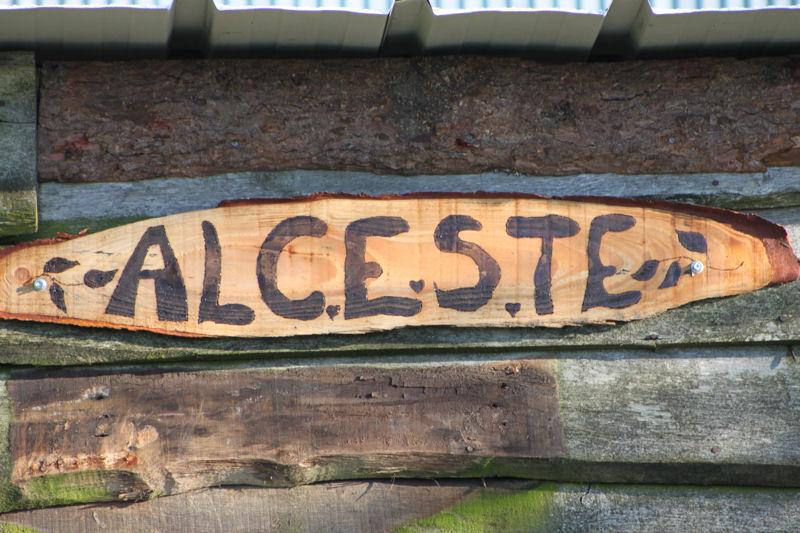 Alceste, hongre de 25 ans, adopté par Pacha ! 451083IMG3428