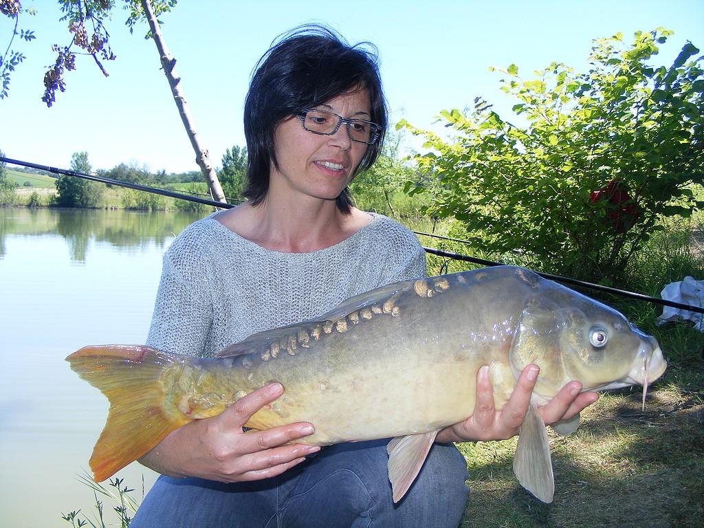 Petit lac d'agriculteur I 4534801918