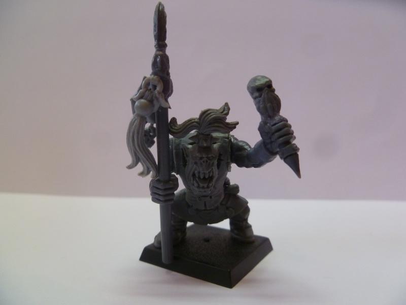 Perso et régiment orque  457529P1140081
