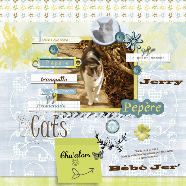 Scrap'arabe de Mars 2016 | les pages 461538JerryKitLemessagerdusoleilbyimaginebyfranblogspotBrushbyGravimetri94WAbymotsdartblogspotChallengeScraparabe