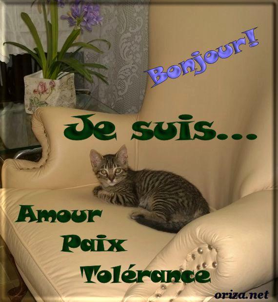 Bonjour, bonsoir..... - Page 3 462935bonjour15001