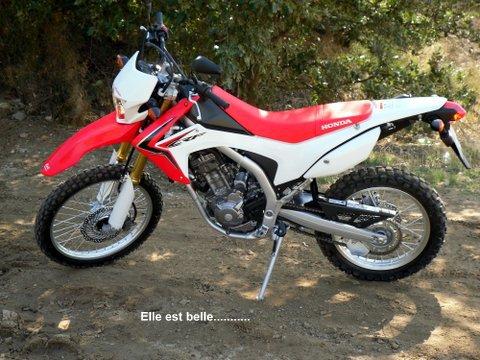 Essai TT de la HONDA CRF250L 465987SDC15607