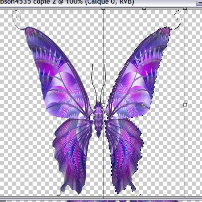 Tutoriel debutant faire bougé les ailes d'un papillon 466250Capture08