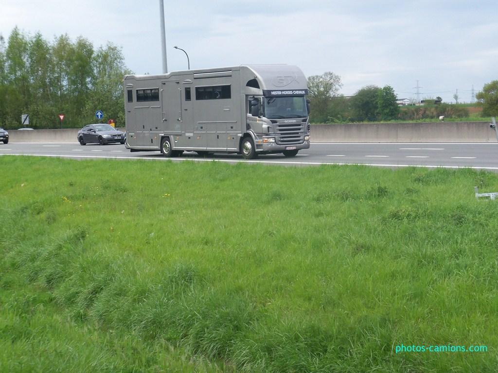 Transports de chevaux 466571photoscamions30Avril201260