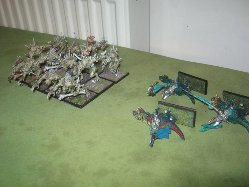 Méga bataille en 3 parties, pour une mini campagne 469663IMG1567