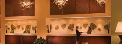 Les hotels de WDW. 476971Sanstitre7