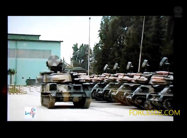 القوات البرية الجزائرية  - صفحة 6 477071zsu234