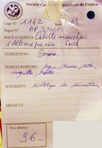 salon de l'Aviculture de Paris du 22/02/2014 au 02/03/214 - Page 5 477634P1130592