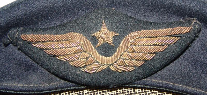 Insigne de casquette armée de l'air 479625DSC013