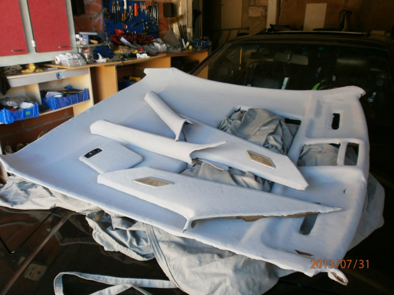 remplacement toit ouvrant 481906P7310040