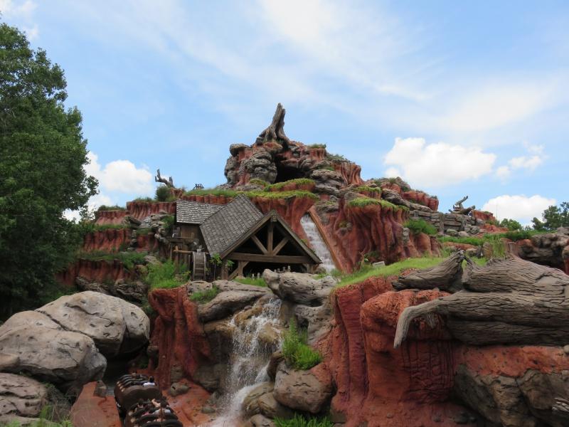 Walt Disney World + Universal Studios + Sea World + Busch Gardens Summer 2014 - Page 2 490386IMG0494