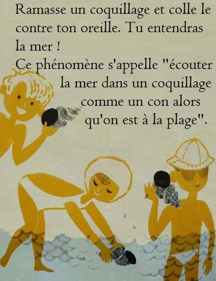 HUMOUR - blagues - Page 5 490399Plage
