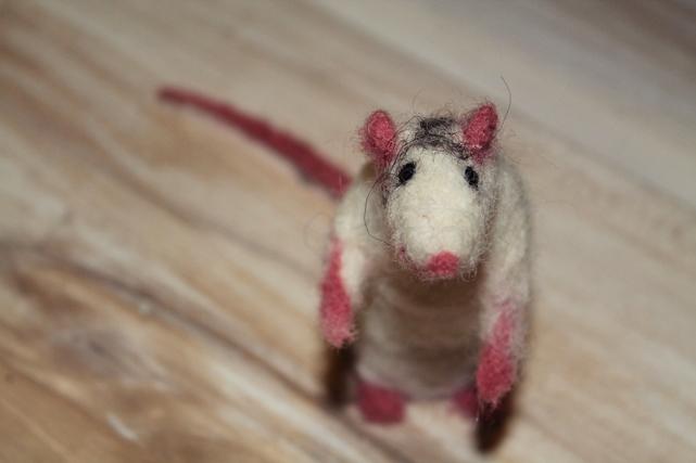 Essai : animaux en laine feutrée  490513ratt
