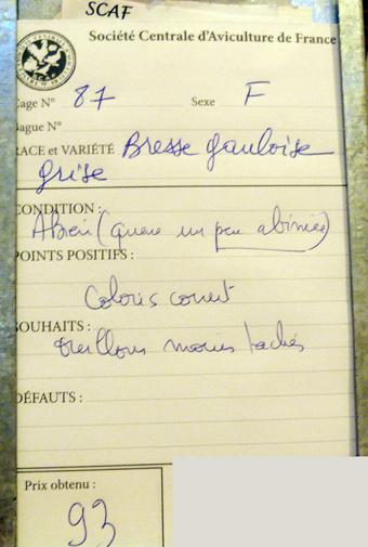 2014 - salon de l'Aviculture de Paris du 22/02/2014 au 02/03/214 - Page 3 499023P1130355