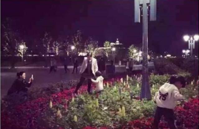 [Shanghai Disney Resort] Le Resort en général - le coin des petites infos  - Page 39 500035w107