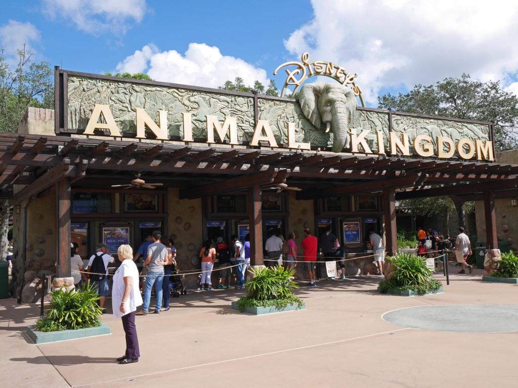 Une lune de miel à Orlando, septembre/octobre 2015 [WDW - Universal Resort - Seaworld Resort] - Page 6 502599P1030016