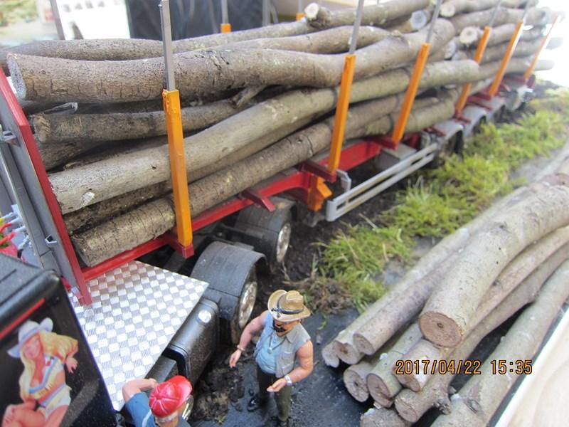 Le bois et le transport 502795IMG4488Copier