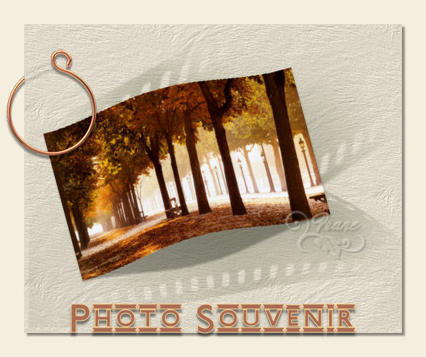 Cours PSP-37-Photo bombée 503940cours37