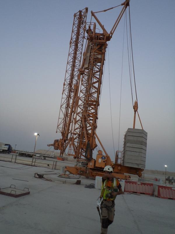 Un bonjour du Qatar 505366DSC00874