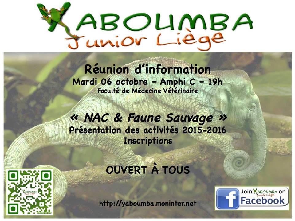 Yaboumba Junior Liège - Portail 51399711949484101535980435637541553211746331429479n