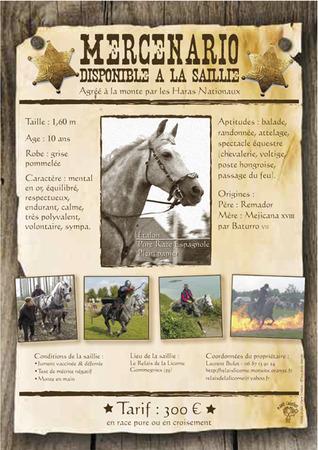 Conquistador des Bardenas mon petit monstre de 2012. 515437mercenario