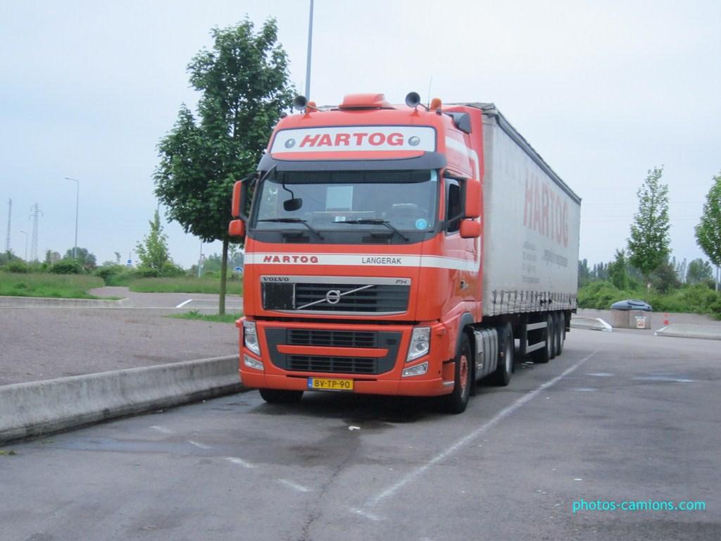 Hartog (Langerak) 515727IMG0625Copier