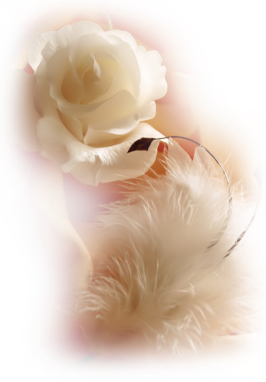 Tubes roses 523940Gibsonjxd