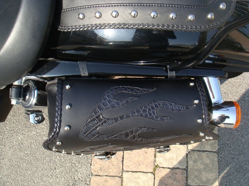 DYNA WIDE GLIDE, combien sommes-nous sur Passion-Harley - Page 7 525676Retaille6