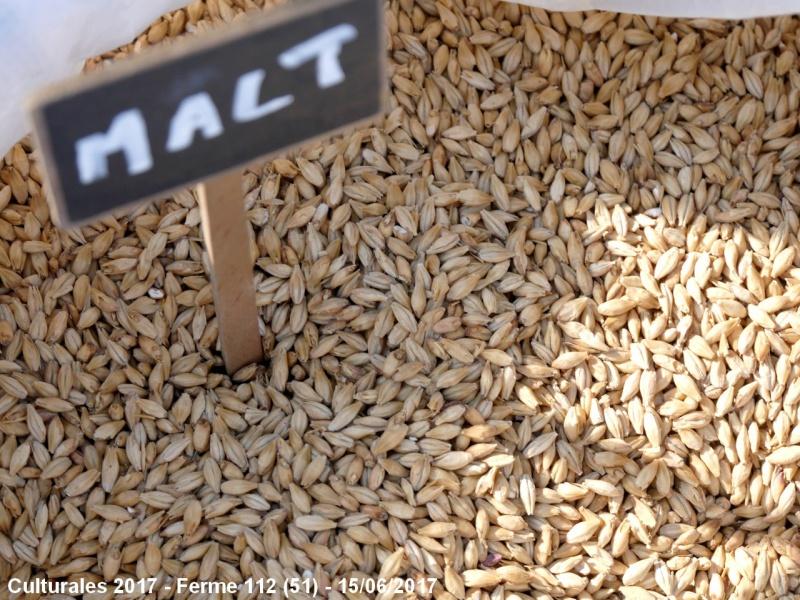 La Filère Orges - Malt - Bière - Page 4 529144Malt
