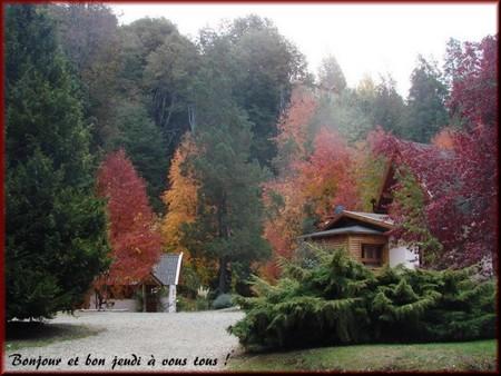 Bonjour bonsoir,...blabla Novembre 2013   - Page 3 532890je111010