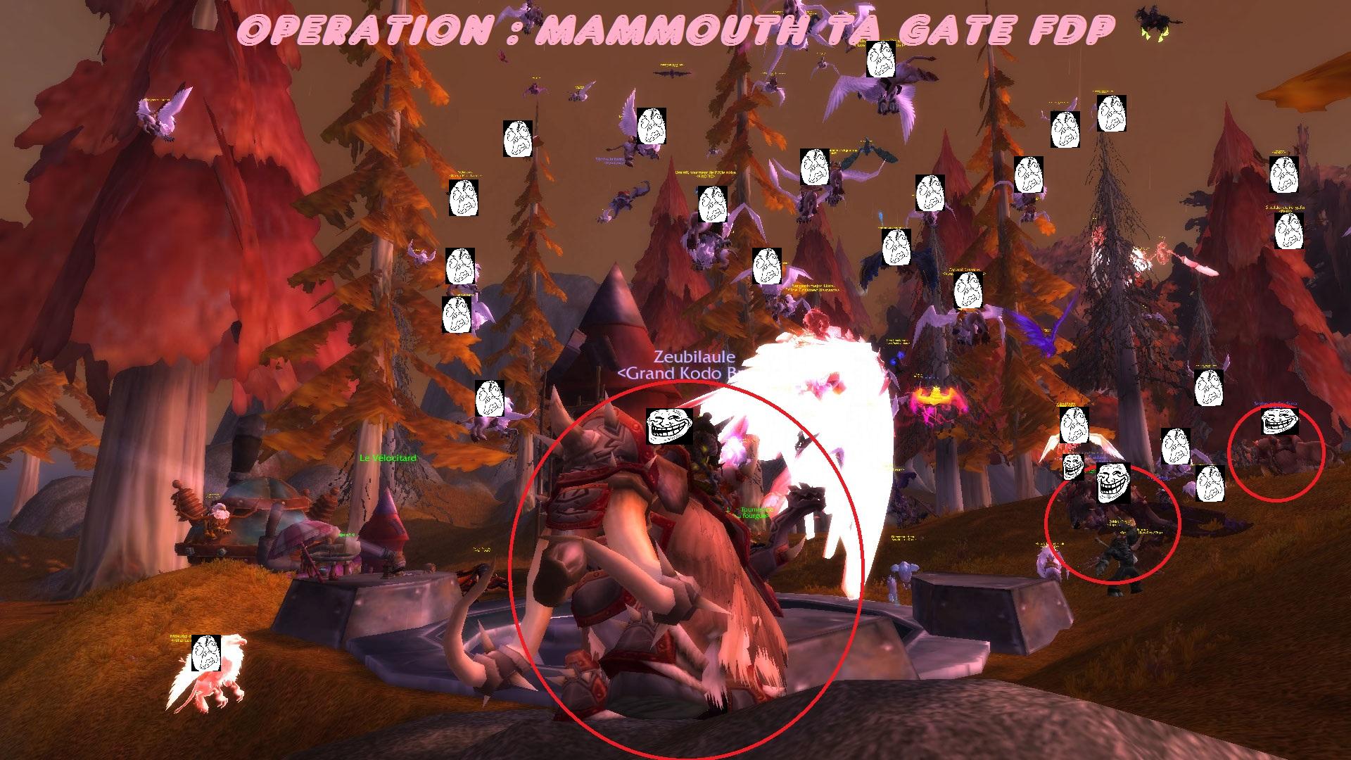 JE MAMMOUTH TA GATE FDP 535044MAMMOUTHTAGATEFDP