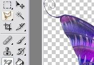 Tutoriel debutant faire bougé les ailes d'un papillon 538298Capture03