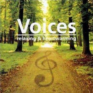 Compilations incluant des chansons de Libera 540544Voices300