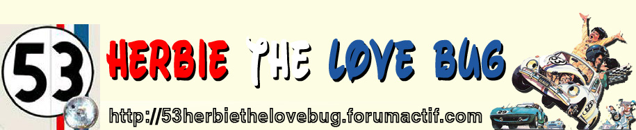 53 - Herbie the love bug -  53
