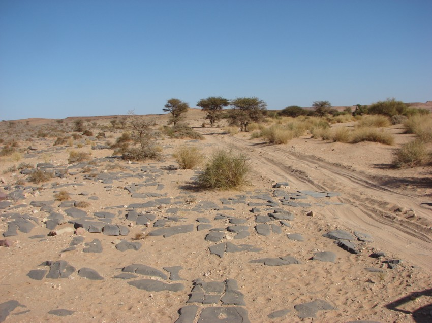 Le Grand Sud du Maroc - II 549290102