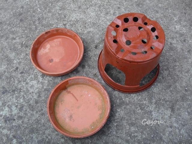 Coupelle d'eau 549868buv