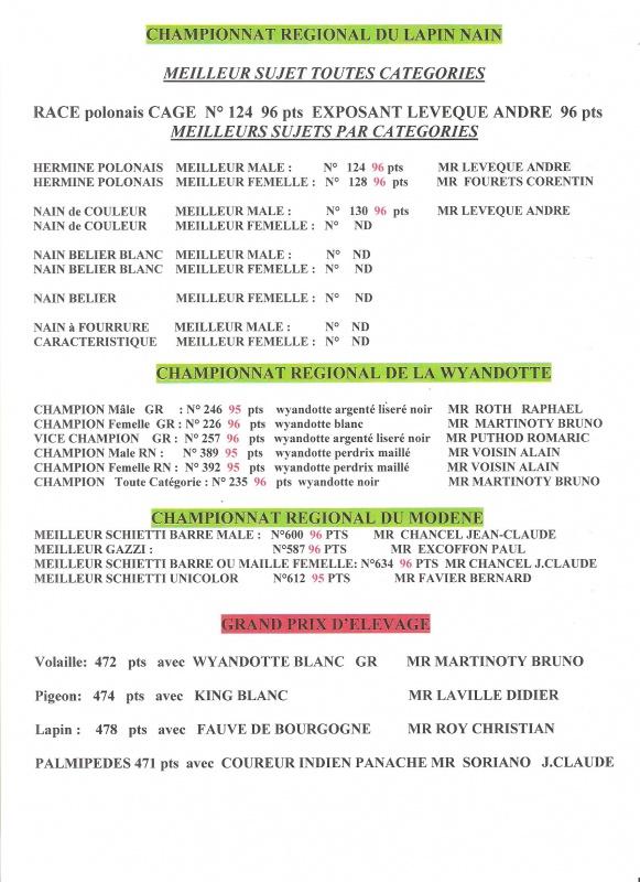 Châtillon s/ Chalaronne 2015 550166Chtillon20152