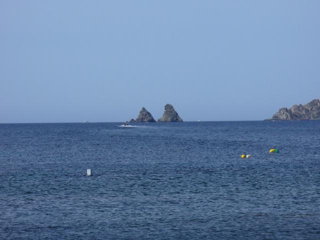 Toulon et ses environs 550184P1060231