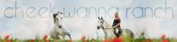 Cheek Wanna Ranch - partenariat  554007bann25060