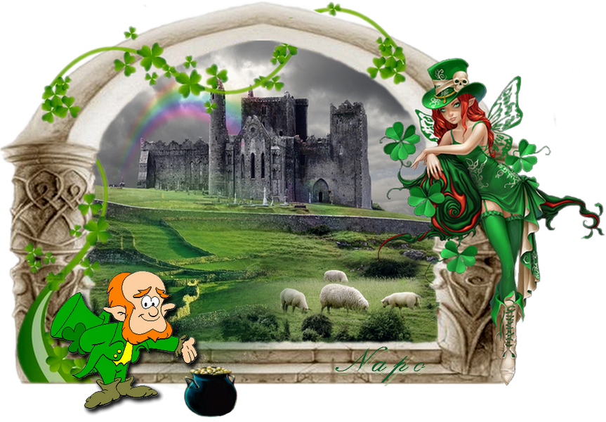 Duel Wala contre Napo = ballade irlandaise 558379macratNapoDfiWalasigne