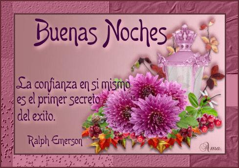 Flores con Frase 558553noches