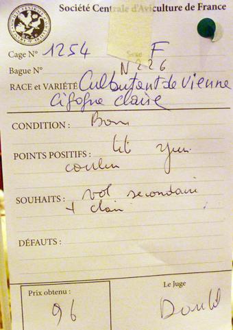 salon de l'Aviculture de Paris du 22/02/2014 au 02/03/214 - Page 5 560686P1130590